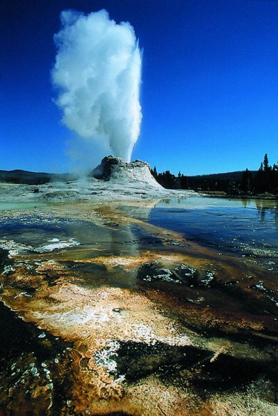Castle Geyser at Yellowstone National Park